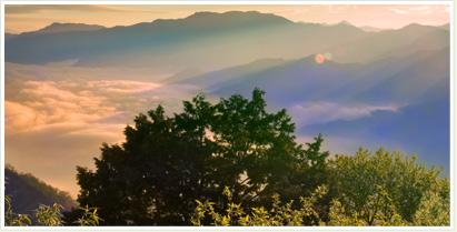阿里山國家風景區