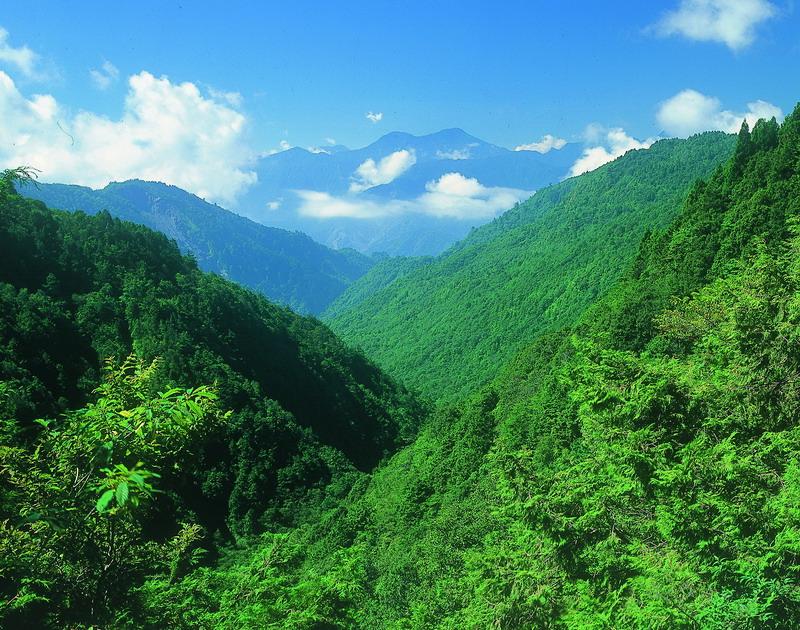 太平山國家森林遊樂園